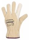 Zimní rukavice HILTON WINTER