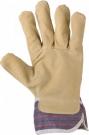 SEAN - pracovní rukavice
